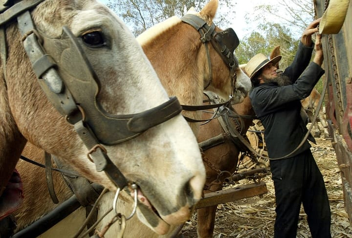 Are the Amish really wealthy? Money secrets revealed