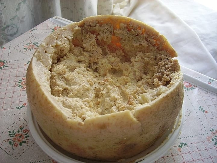 disgusting luxury products, casu marzu