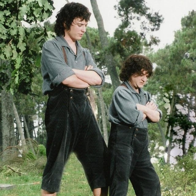 Scale Double, Frodo, Elijah Wood, Lord of the Rings