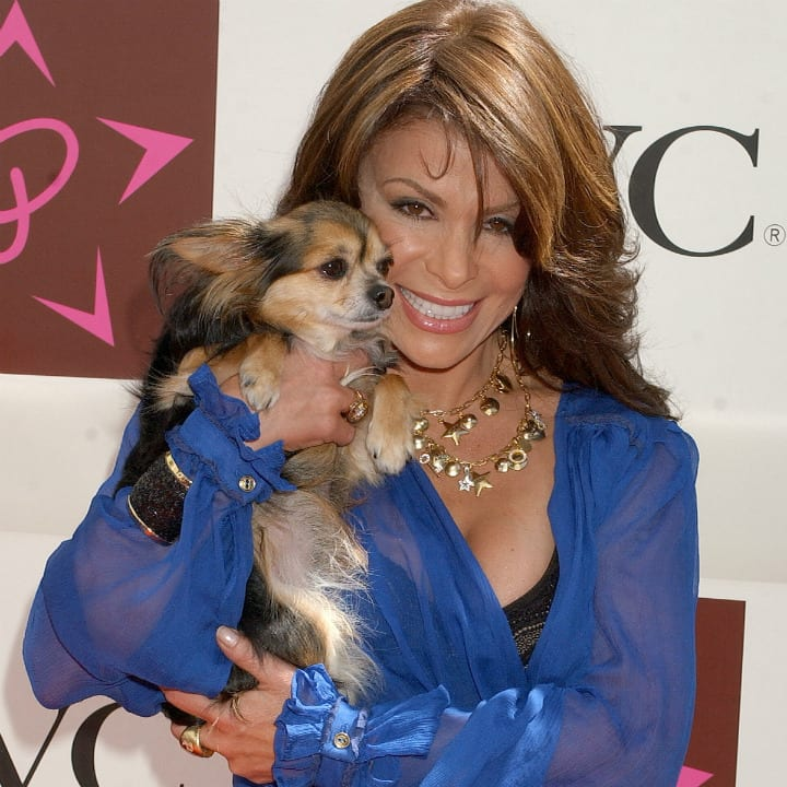 paula abdul and dog on red carpet