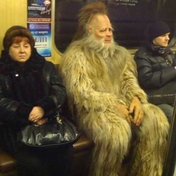 sasquatch on the train