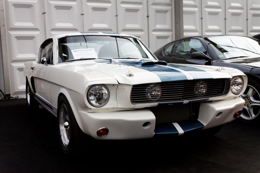 classic american muscle cars shelby mustang